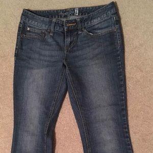 American Rag 5 Short Denim Jeans Flare Boot Cut